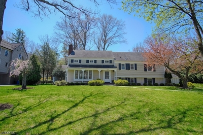 Single Family Home For Sale: 264 Long Hill Dr