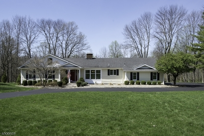 Mendham Twp. Single Family Home For Sale: 54 Ironia Rd