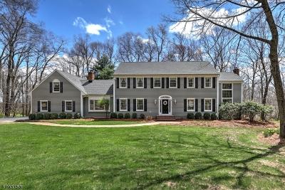 Tewksbury Twp. Single Family Home For Sale: 31 Big Spring Rd