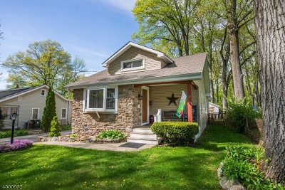 Mount Olive Twp. Single Family Home For Sale: 13 Grove St