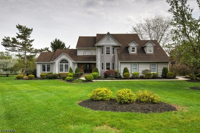 Branchburg Twp. Single Family Home For Sale: 24 Lehigh Rd