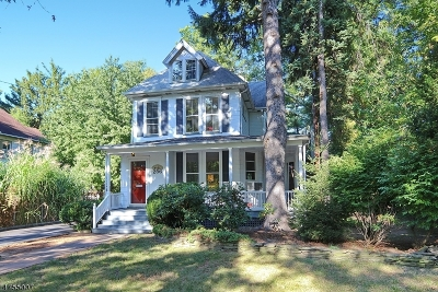 WestField Single Family Home For Sale: 256 W Dudley Ave