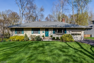 Berkeley Heights Single Family Home For Sale: 53 Cromwell Ct