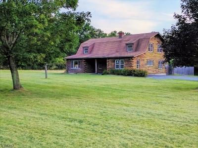 Kingwood Twp. Single Family Home For Sale: 153 Hammer Road