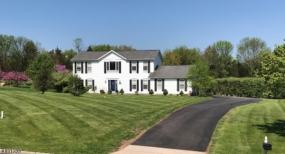 Branchburg Twp. Single Family Home For Sale: 970 Old York Rd