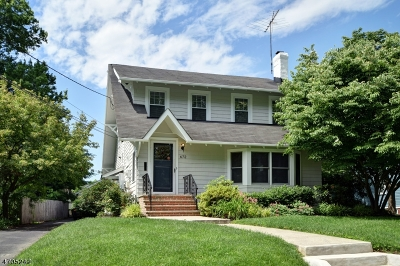 Westfield Town Single Family Home For Sale: 672 Boulevard