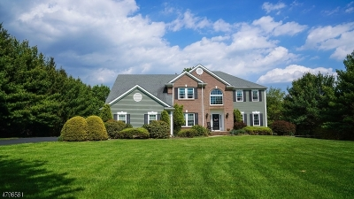Tewksbury Twp. Single Family Home For Sale: 2 Pace Farm Rd