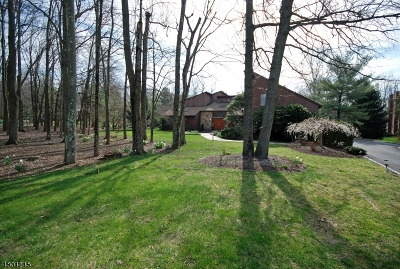 Warren Twp. Single Family Home For Sale: 19 Heather Ln