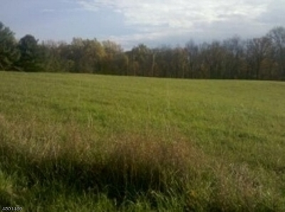 Green Twp. NJ Residential Lots & Land For Sale: $149,900