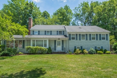 Single Family Home For Sale: 484 Long Hill Dr