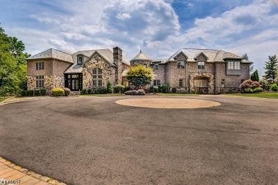 Readington Twp. Single Family Home For Sale: 18 Dogwood Dr