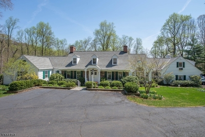 Bernardsville Boro Single Family Home For Sale: 28-2 Post Kennel Rd