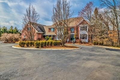 Readington Twp. Single Family Home For Sale: 11 Overlook Rd