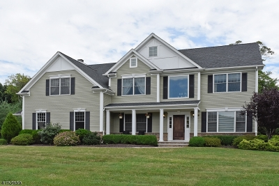 Roxbury Twp. Single Family Home For Sale: 2 Perin Pl