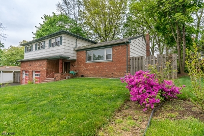 West Orange Twp. Single Family Home For Sale: 216 Northfield Ave