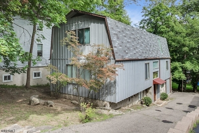 Morristown Town, Morris Twp. Single Family Home For Sale: 47a Lake Rd