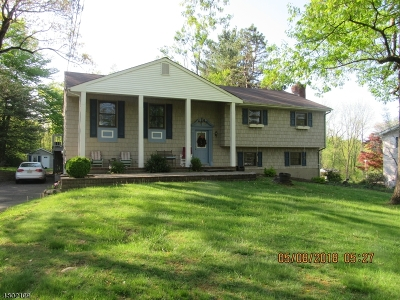 Bridgewater Twp. Single Family Home For Sale: 1267 Cornell Rd
