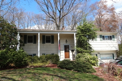 Berkeley Heights Single Family Home For Sale: 80 Ferndale Drive