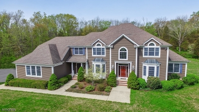 Bernards Twp. Single Family Home For Sale: 35 Woodman Ln
