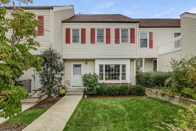 Mendham Boro, Mendham Twp. Condo/Townhouse For Sale: 16 Pembroke Dr