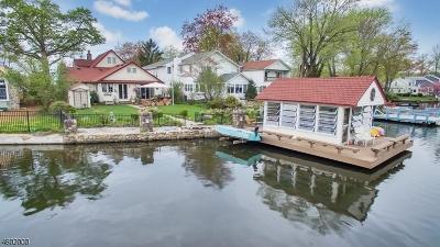 Denville Twp. Single Family Home For Sale: 20 Lenape Trl