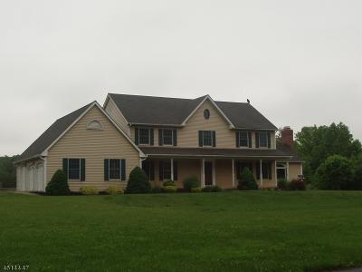 Readington Twp. Single Family Home For Sale: 41 Ridge Rd