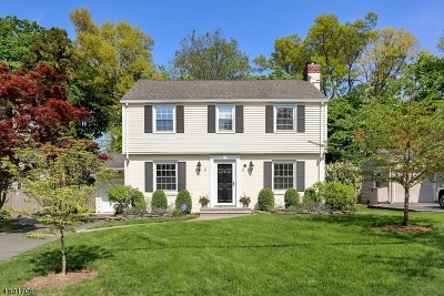 Summit Single Family Home For Sale: 31 Fairview Ave