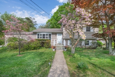 Roxbury Twp. Single Family Home For Sale: 21 Pleasant Hill Rd