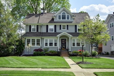 WestField Single Family Home For Sale: 550 Alden Ave