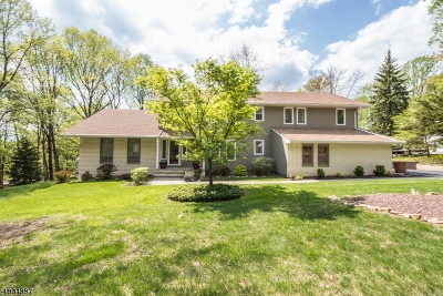 Clinton Twp. Single Family Home For Sale: 109 Petticoat Lane