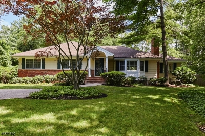 New Providence Single Family Home For Sale: 83 Pine Way