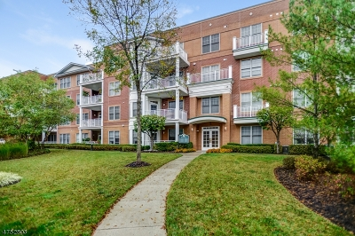 Livingston Twp. Condo/Townhouse For Sale: 1302 Pointe Gate Dr #302