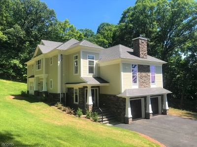 Bridgewater Twp. Single Family Home For Sale: 544 Steele Gap Rd
