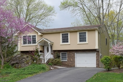Sussex County Single Family Home For Sale: 909 Walnut Drive