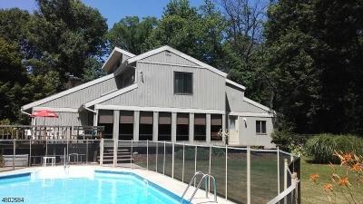 Alexandria Twp. Single Family Home For Sale: 37 Alexandria Dr