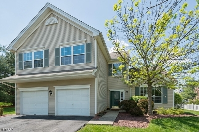 Bridgewater Twp. Single Family Home For Sale: 6 Deforest Ln