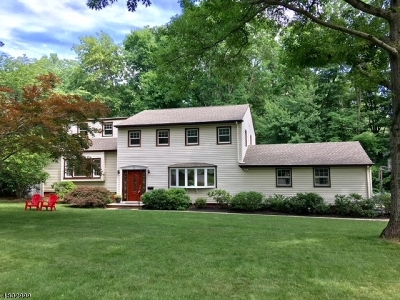 Berkeley Heights Single Family Home For Sale: 73 Whitney Dr