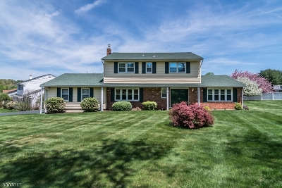 Mount Olive Twp. Single Family Home For Sale: 3 Indian Spring Rd