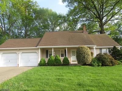 Edison Twp. Single Family Home For Sale: 213 W Prescott Ave