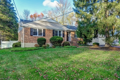 Berkeley Heights Single Family Home For Sale: 685 Mountain Ave