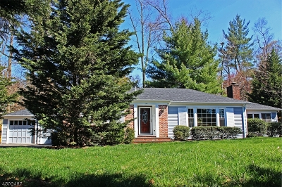 Millburn Twp. Single Family Home For Sale: 344 Old Short Hills Rd