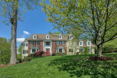 Bernardsville Boro Single Family Home For Sale: 20 Laurelwood Drive