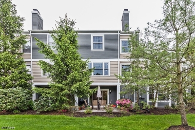 Bridgewater Twp. Condo/Townhouse For Sale: 155 Northfield Rd