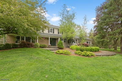 Bernards Twp. Single Family Home For Sale: 47 Melbourne Way