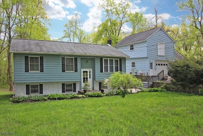 Delaware Twp. Single Family Home For Sale: 20 Lower Ferry Road