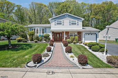 Edison Twp. Single Family Home For Sale: 40 Meyer Rd