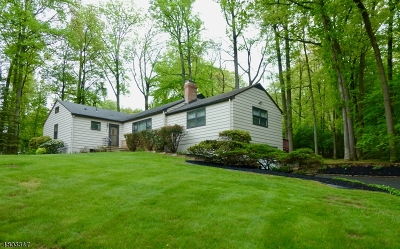 Berkeley Heights Single Family Home For Sale: 6 Webster Dr