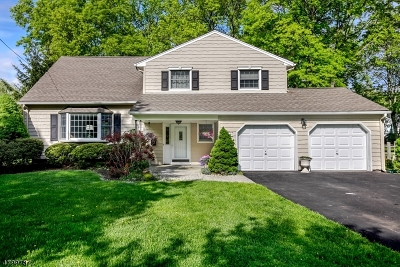 Berkeley Heights Single Family Home For Sale: 248 Chaucer Dr