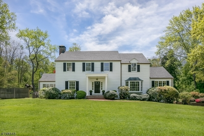 Harding Twp. Single Family Home For Sale: 141 Glen Alpin Rd