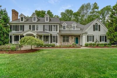 Bernards Twp. Single Family Home For Sale: 54 Edward Ct